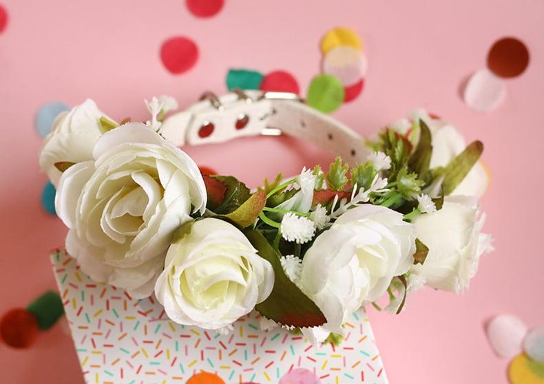 Eros   Ivory Puppy Cat Flower Collar - Bark and Bloom Designs ...
