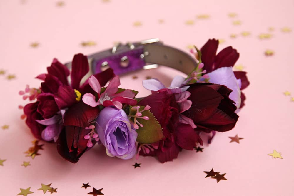 Bark and Bloom Designs – Flower Collars